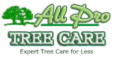 Award-Winning & Top Rated Tree Service Company- Dangerous Tree Removal | Trimming | Land Clearing | Residential- Commercial – Municipal – Contractors Tree Service Maintenance | 24/7 Emergency Tree Services | Serving Auburn WA| Federal Way| Kent| Des Moines WA| Burien| Seatac|Normandy Park| Edgewood | Milton | Black Diamond | Bonney Lake | Lake Tapps | NE Tacoma | Pacific | Renton | Fife | Puyallup | Tukwila | Covington | Maple Valley | South King & Pierce Counties Washington