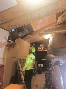 Emergency Tree Removal Service Kent-Auburn-Federal Way-Des Moines Wa