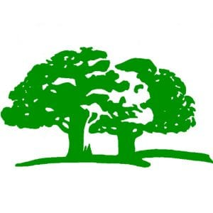 insured-tree-service-Auburn-Federal-Way-Kent-Des-Moines-Burien-WA