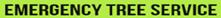 Best Emergency Tree Service Auburn, Federal Way, Kent, Burien, Seatac, Edgewood, Milton, Normandy Park, Des Moines WA