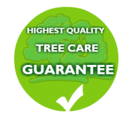 highest quality tree care